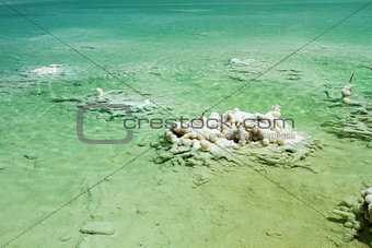 Beautiful coast of the Dead Sea .