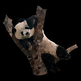 low poly panda