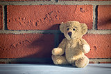 teddy bear sit in front of a brick wall