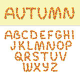 Autumn english alphabet