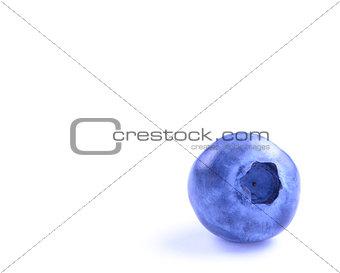 Single Fresh Blueberry Isolated on the White Background
