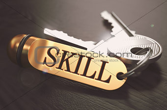 Skill - Bunch of Keys with Text on Golden Keychain.
