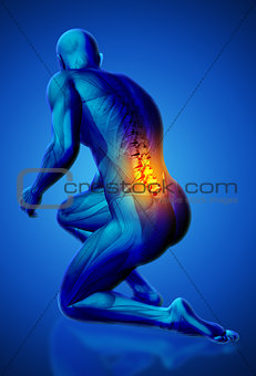 3D male medical figure with lower spine highlighted in kneeling