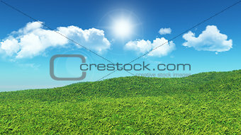 3D grassy landscape