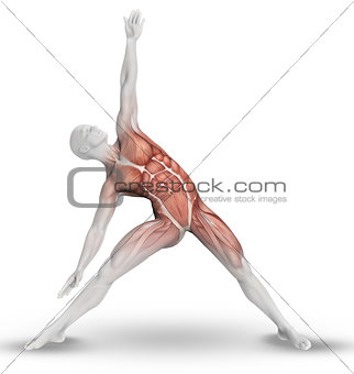 3D male figure with partial muscle map in yoga pose
