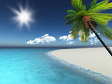 3D render of a palm tree on a sandy beach