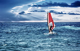 Windsurfer in the sea