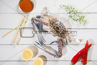 Top view raw blue crab and ingredients