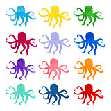 Set of varicolored watercolor hand drawn octopus. Nature ornament.
