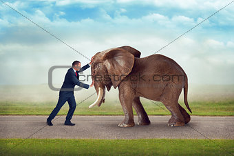 business challenge elephant obstacle