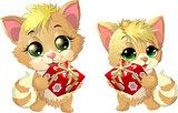 cats and podarok
