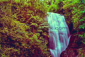 Waterfall in jungles