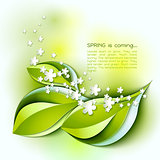 Spring abstract vector background. Green leaves and white flowers.
