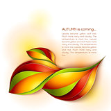 Autumn abstract vector background. Orange leaves