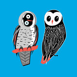 two owls on blue