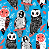 pattern of owls