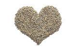 Marbled dark green lentils in a heart shape