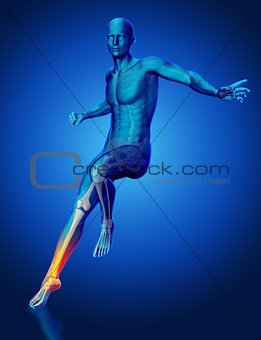 3D male medical figure landing from a jump