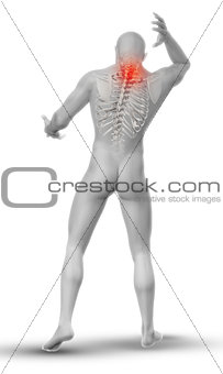 3D male figure with partial skeleton
