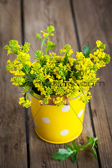 Beautiful summer yellow flowers