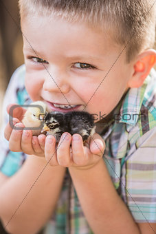 Cute Young Boy with Chicks