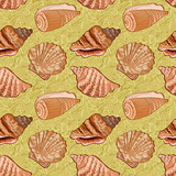 Seamless background, seashells