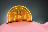 Putting Bitcoin Into Piggy Bank