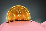 Putting Bitcoin Into Piggy Bank