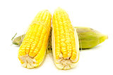 Boiled corn on white background