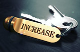 Keys with Word Increase on Golden Label.