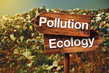 Pollution or Ecology Concept