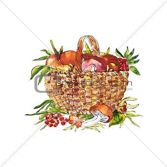 sketch illustration of basket with mashrooms