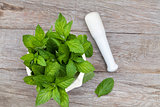 Fresh mint in mortar on garden table