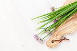 Fresh garden spring onion on white table