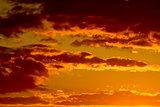 Orange sky landscape