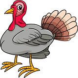 turkey bird farm animal cartoon