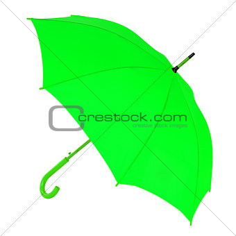 green umbrella on a white background