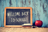 text welcome back to school written on a chalkboard, cross proce