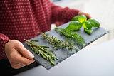 Closeup of woman's hand holding slate of fresh herbs