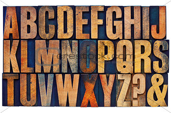 alphabet in letterpress wood type blocks