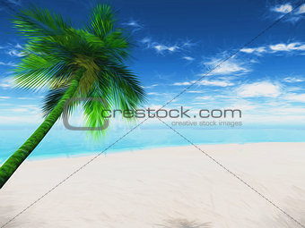 3D Palm tree landscape with abstract effect