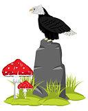 Eagle on stone