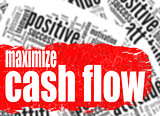 Word cloud maximize cash flow