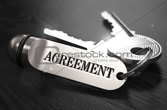 Agreement Concept. Keys with Keyring.