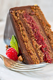 Piece of chocolate cake with raspberries.