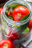 Fresh tomatoes and spices in a jar for canning.