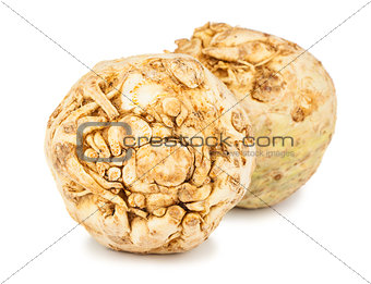 Pair of fresh celery root