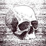 Vector white skull on black background in grunge design style