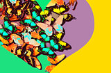 Collage of colorful butterflies within a heart shape on a bright background