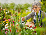 Mature woman watering flowers